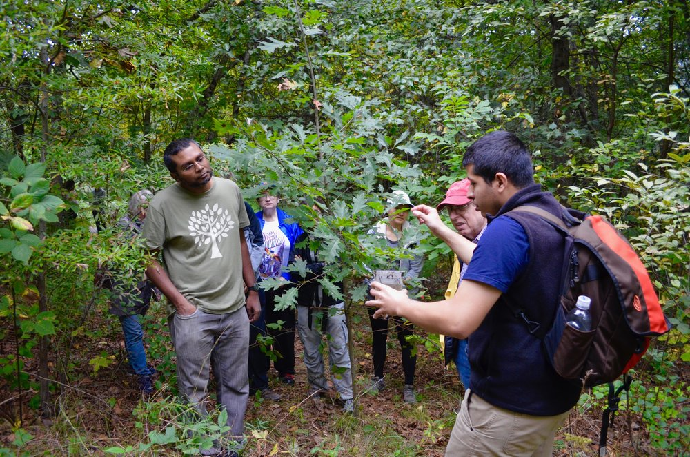 Ecology and Biological Inventory of Van Cortlandt Park - October 6