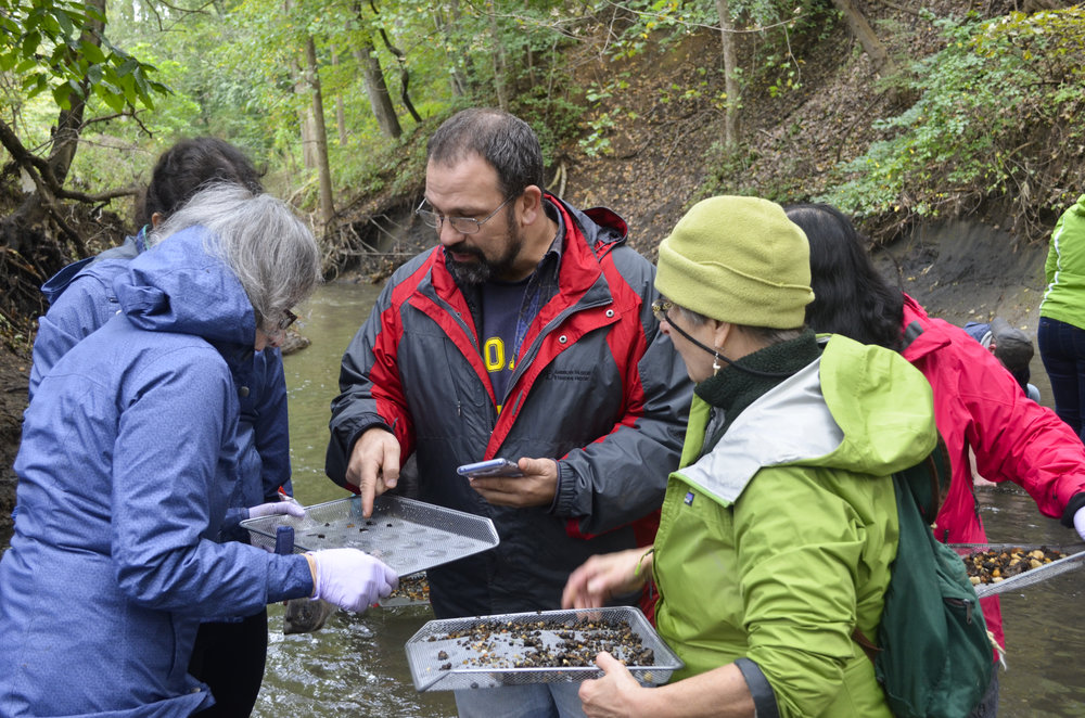 Finding Fossils in Big Brook NJ with Carl Mehling - October 13