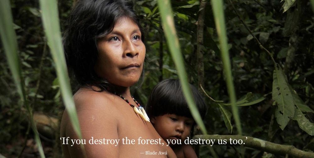 Image via http://www.survivalinternational.org