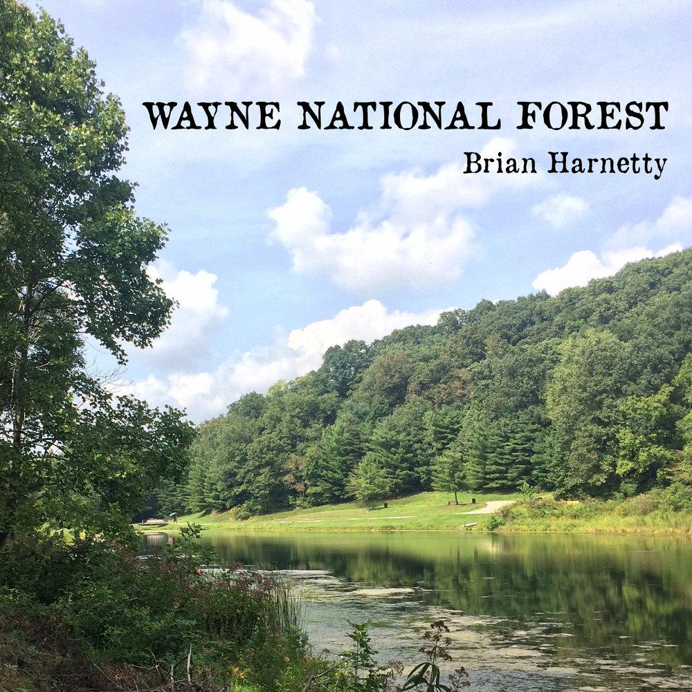 Wayne National Forest Cover_Bandcamp.jpg