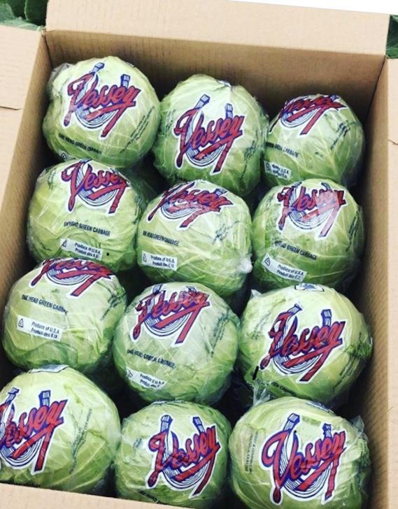 Vessey Cabbage.jpg