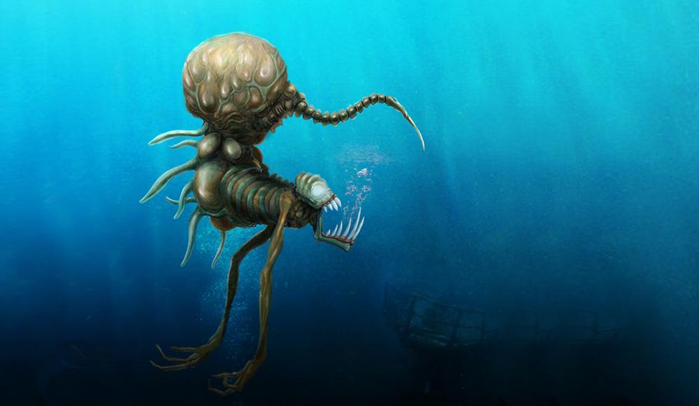 Underwater Creature