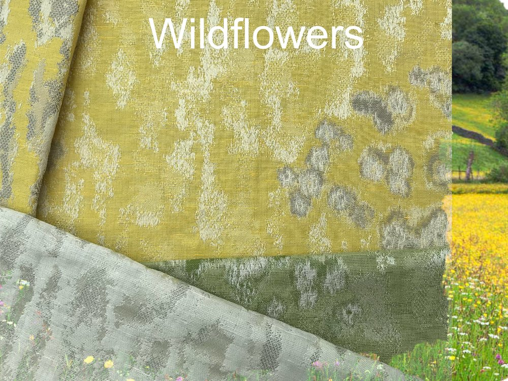 Wildflower photo.JPG