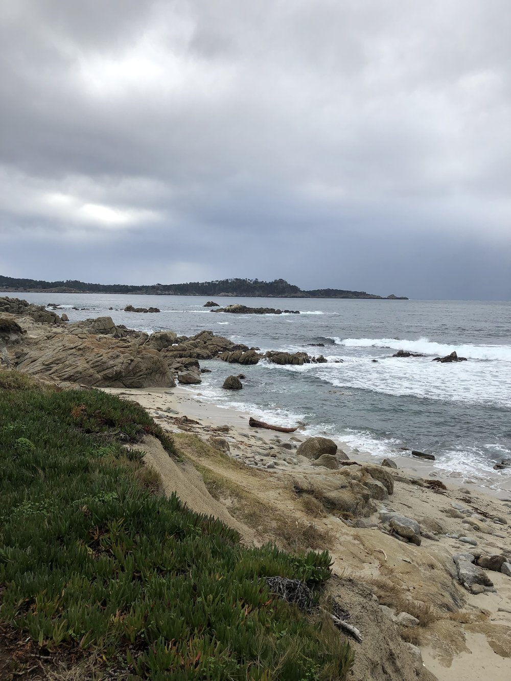 point_lobos.jpg