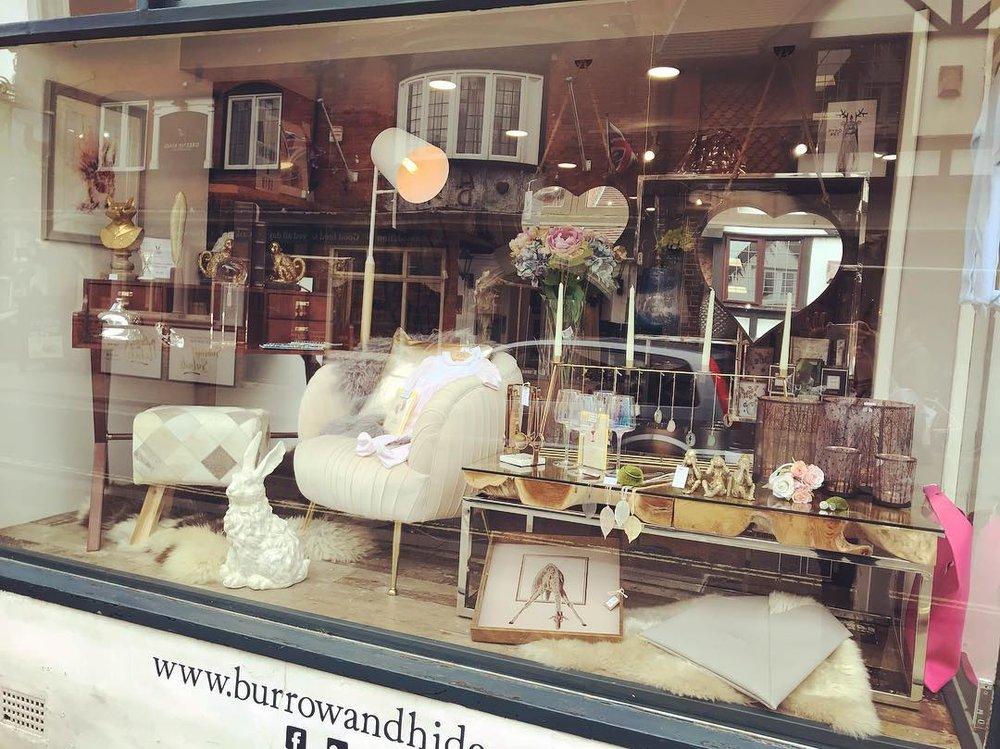 Burrow & Hide Window Display.jpg