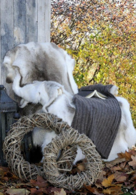 Reindeer Hides by Burrow & Hide