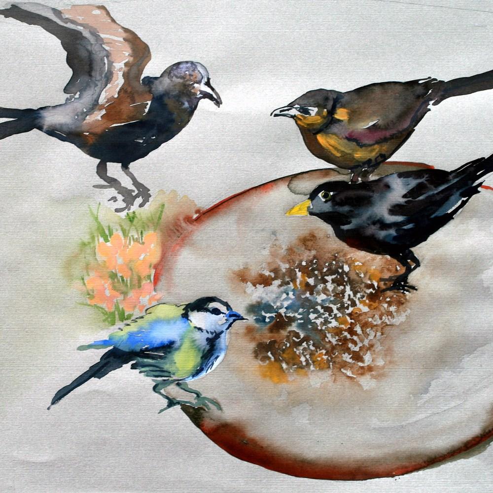 birds-13-3-2008-003.jpg