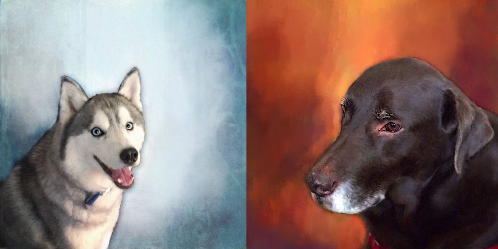 """Pet Portraits"" Learn More & Purchase Here"