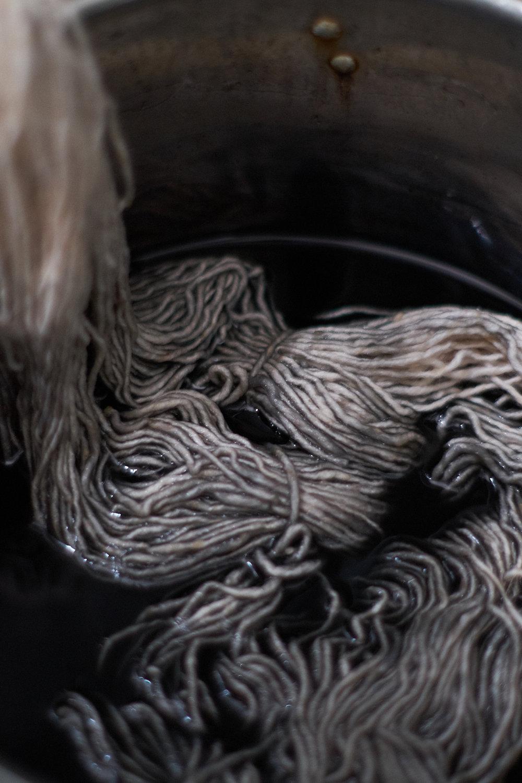 Wool in logwood dye pot.