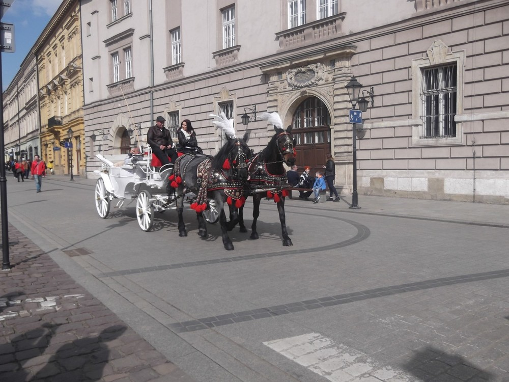NEWSLETTER Poland trip image two.jpg