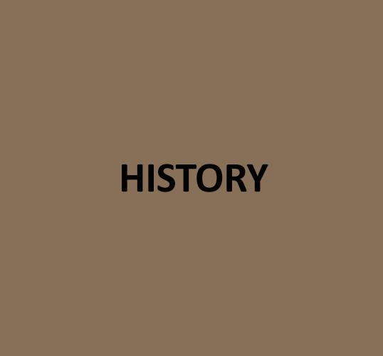 History_curriculum.jpg