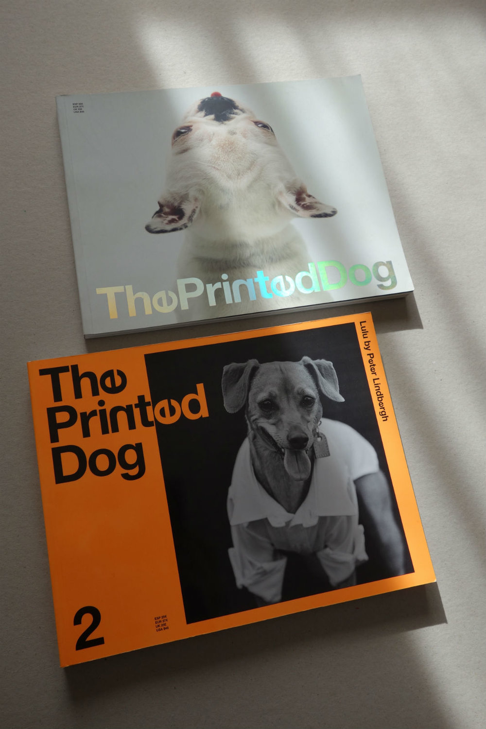 THE PRINTED DOG.jpg