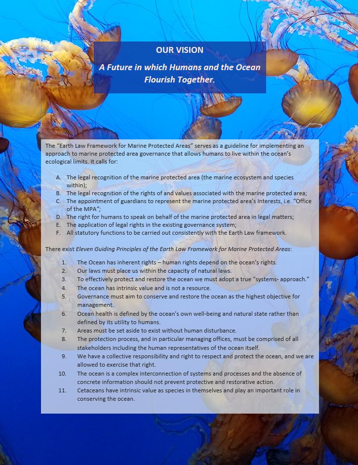 JellyfishFramework.png