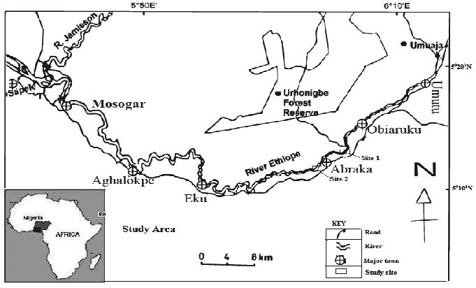Map-of-the-Ethiope-River-showing-the-location-of-the-sampling-sites-Inset-Map-of.png