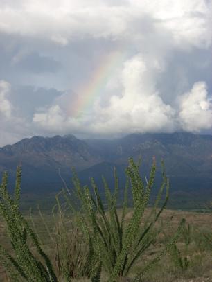 Santa Rita Mountains, Southern Arizona Photo by J. Brun