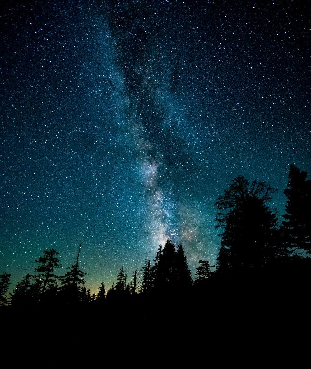 Night sky in Yosemite, California. Photo by Casey Horner