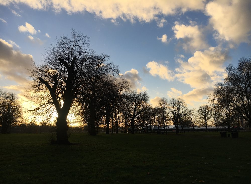 Sunset on Clapham Common