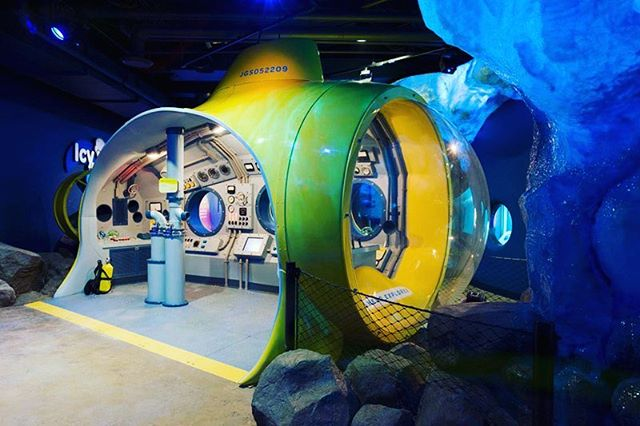 Polar Play Zone @Shedd_Aquarium #sheddaquarium Teaching Kids about Life in the Cold Ocean⠀