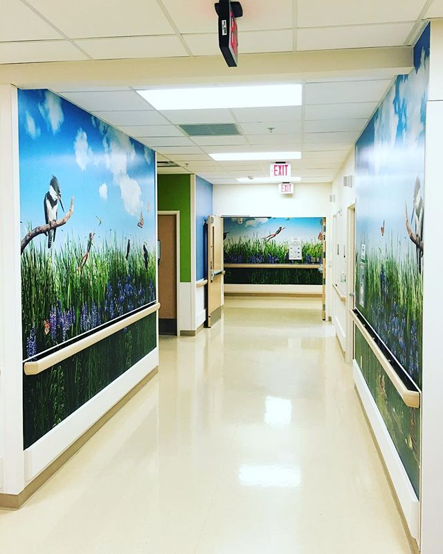CS Mott Children's Hospital in Ann Arbor Michigan.  We have been working on this healing environment for the past 5 years one room at a time.⠀ ⠀ #healingenvironment #healingandnature #huronriver #spacehaus⠀