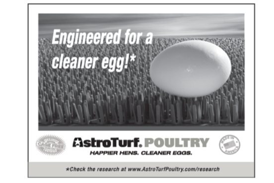 Grassworx LLC Astroturf Poultry_half.png