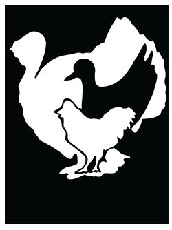 ISPA logo HD.png