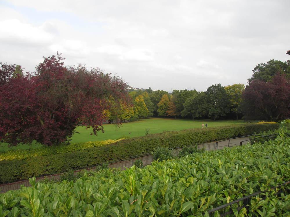 Horniman Gardens Lewisham Card
