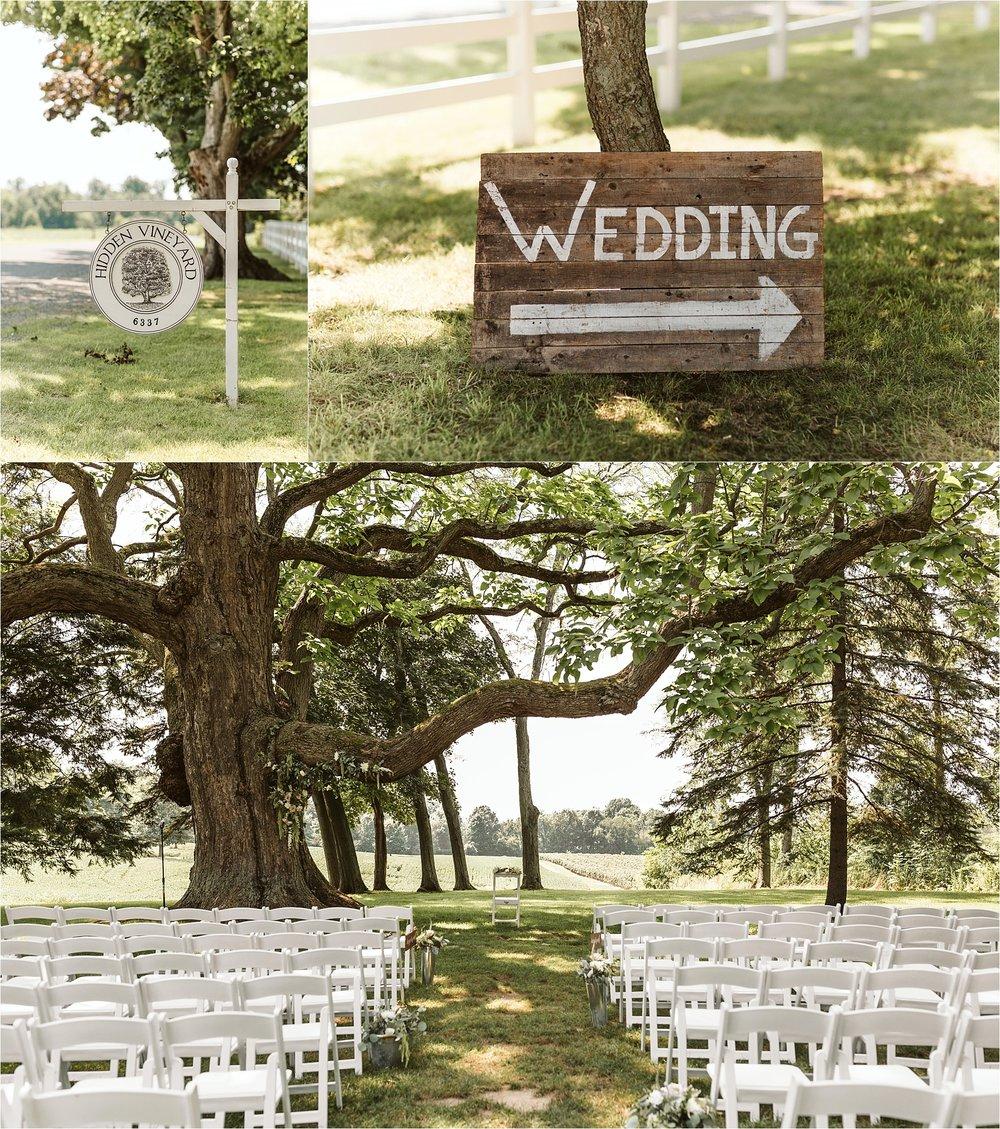 Hidden Vineyard Michigan Wedding_0084.jpg