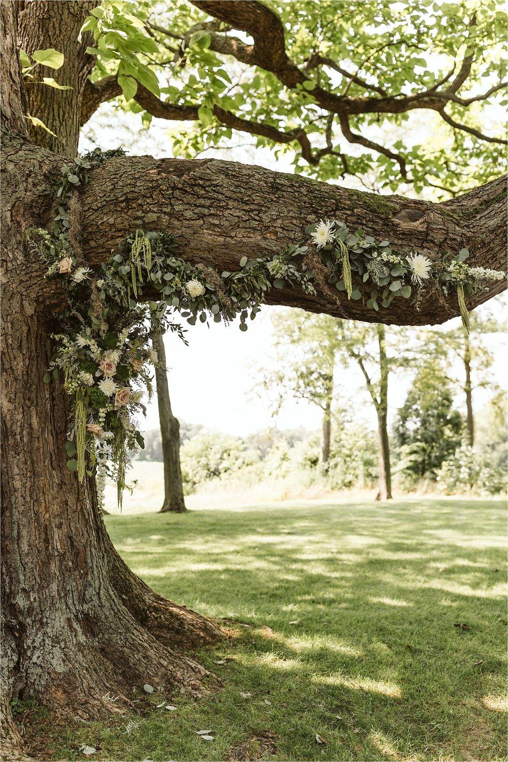 Hidden Vineyard Michigan Wedding_0085.jpg