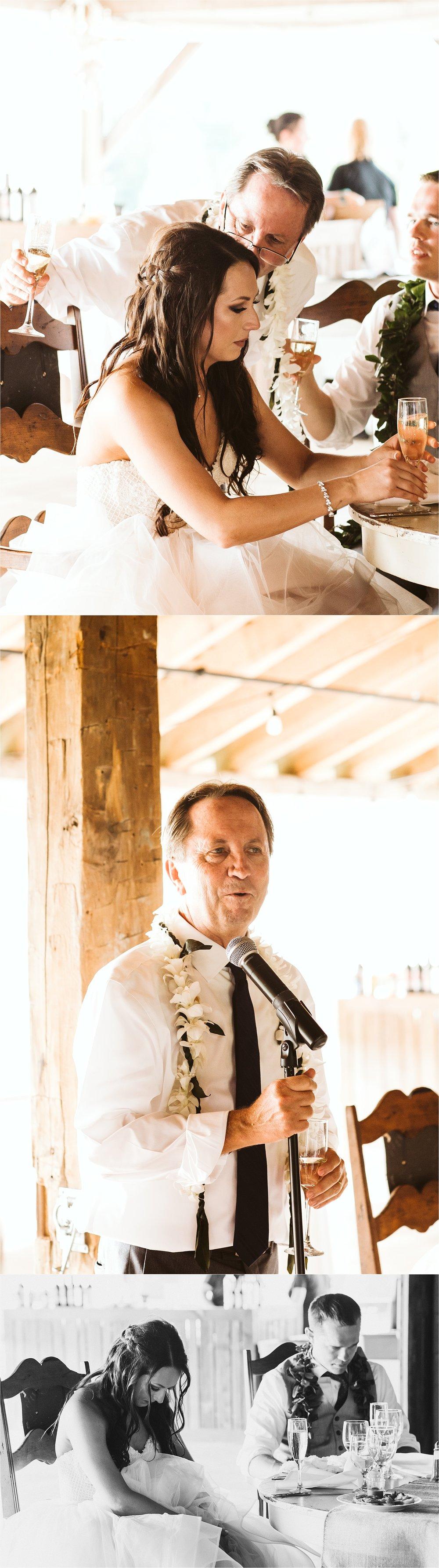 Hidden Vineyard Michigan Wedding_0170.jpg