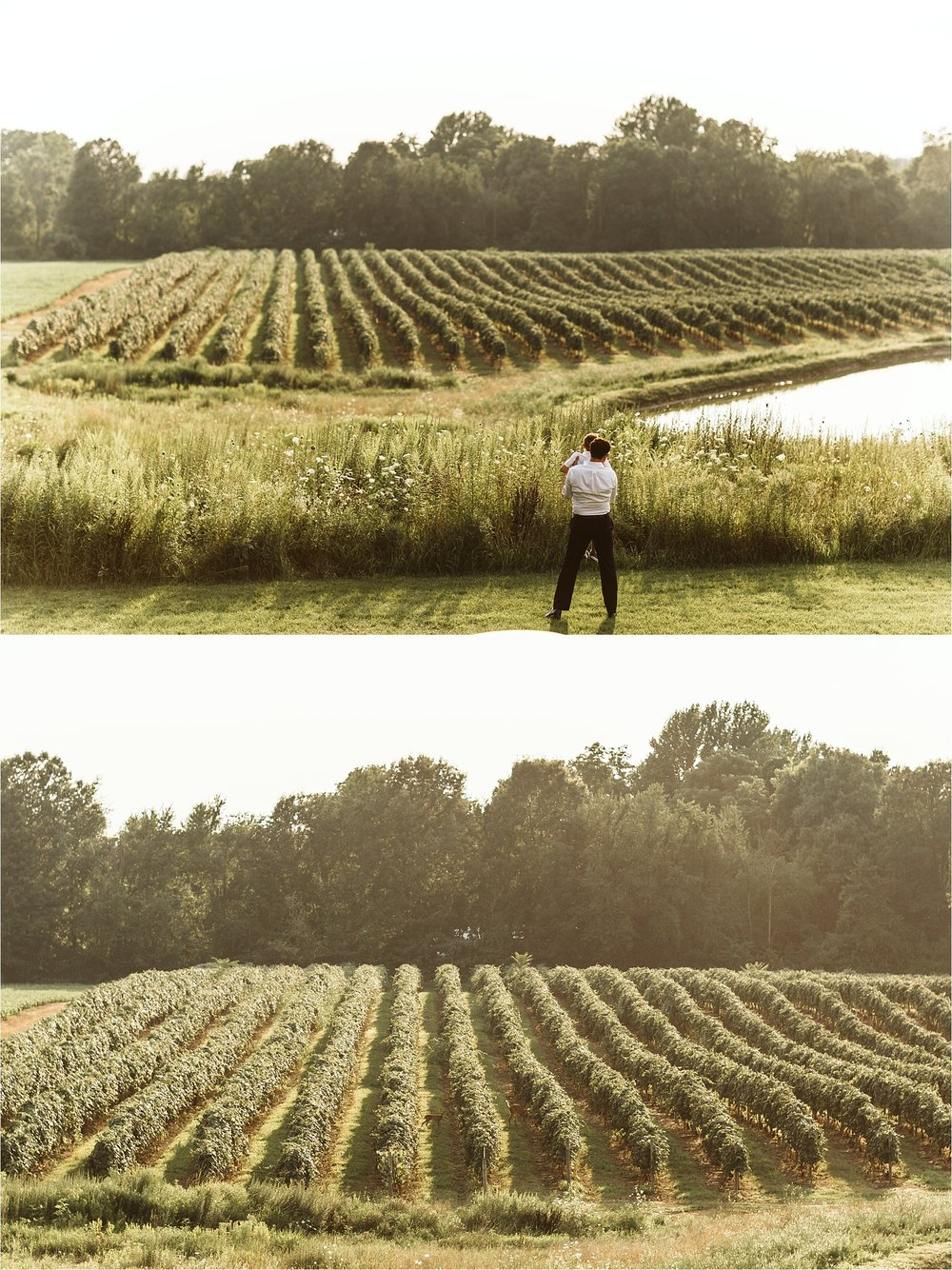 Hidden Vineyard Michigan Wedding_0173.jpg