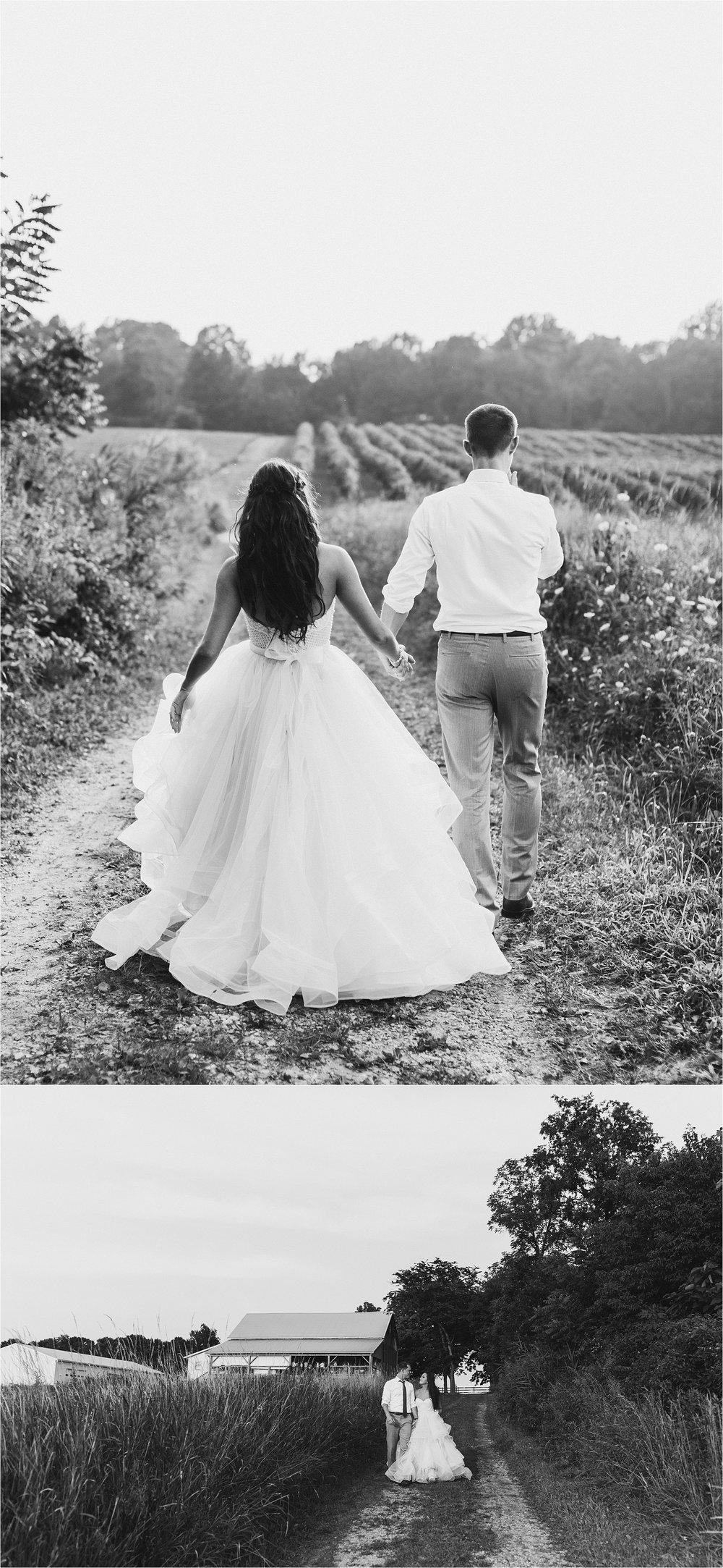 Hidden Vineyard Michigan Wedding_0188.jpg