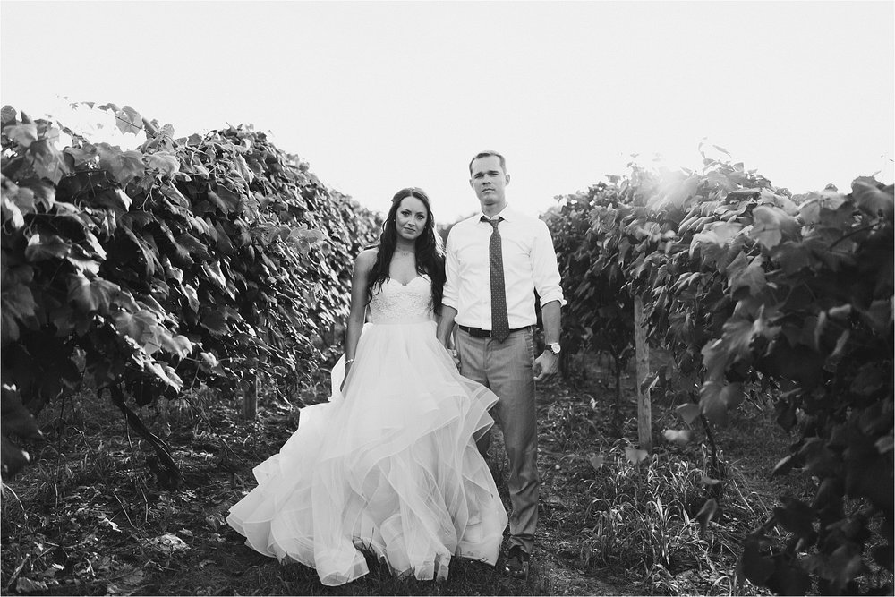 Hidden Vineyard Michigan Wedding_0191.jpg
