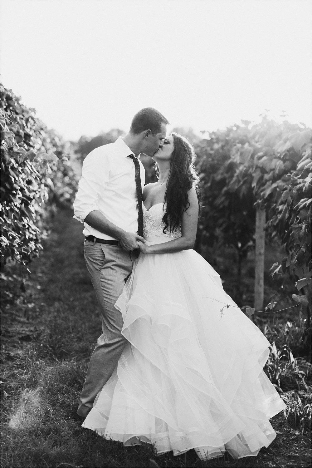 Hidden Vineyard Michigan Wedding_0194.jpg