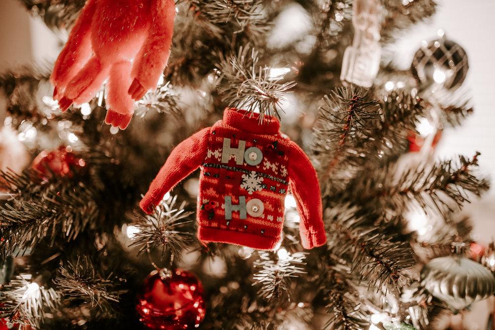 LizAlan_Christmas_2018-95.jpg