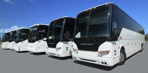 GC Bus tours 3.jpg