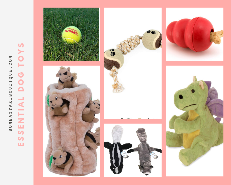 Essential-dog-toys.PNG