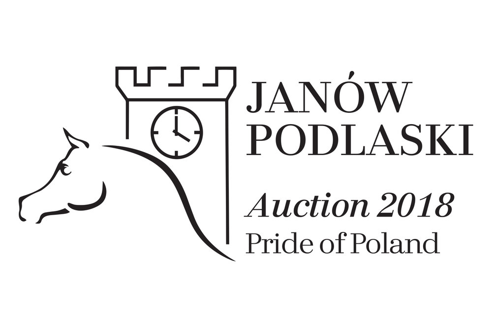 auction logo.jpg