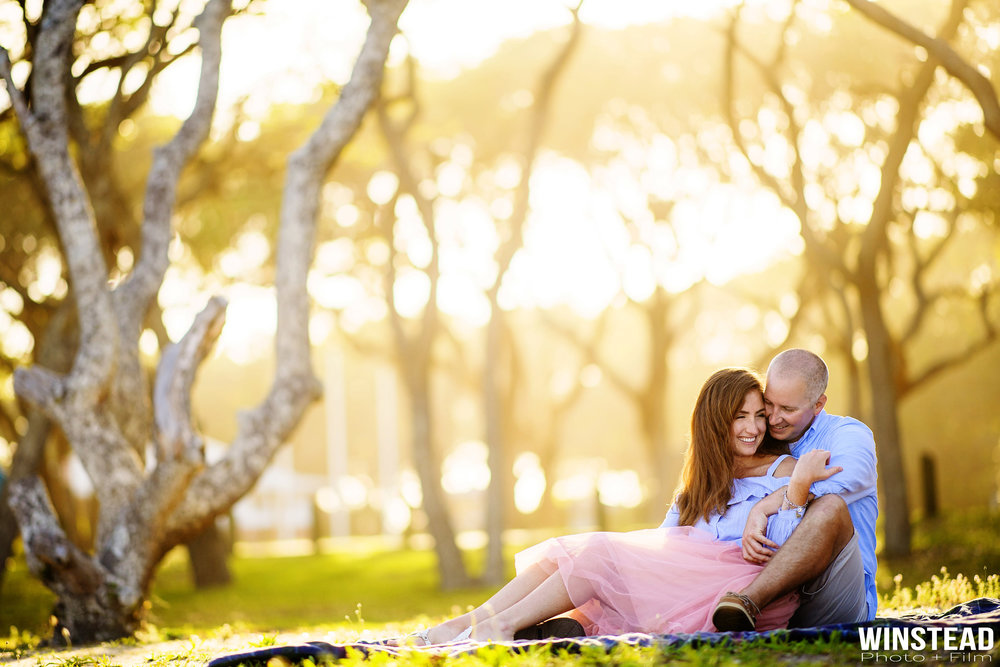 Beautiful engagement photo below the trees at Fort Fisher in Wilmington, NC.