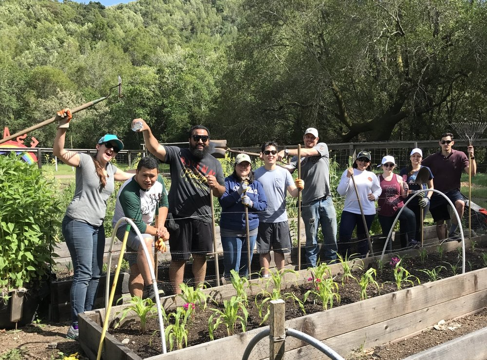 PaperSeed day volunteers pose for a picture after a productive afternoon at the fairfax-san anselmo children's center