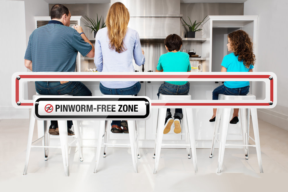 EMVERM_free zone_02.jpg