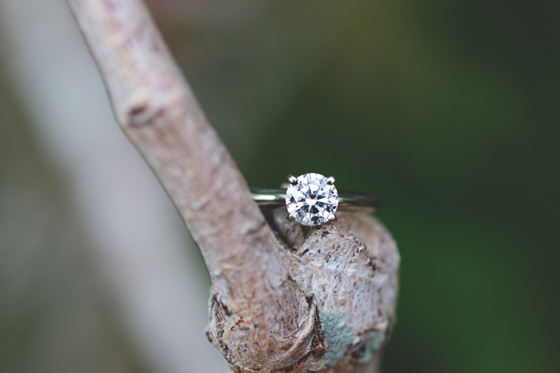 diamond engagement ring on branch outside