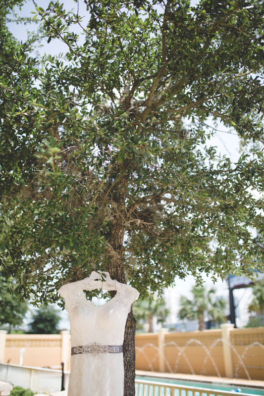 07 wedding dress in tree orlando outdoor wedding photographer 310 lakeside wedding lake eola wedding.jpg