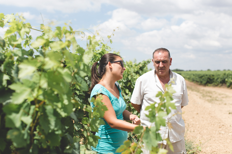 Schiena Vini Italian Vineyards - Tour Guide