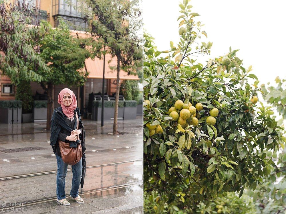 Seville - Ali Batoul Creatives-6_Stomped.jpg