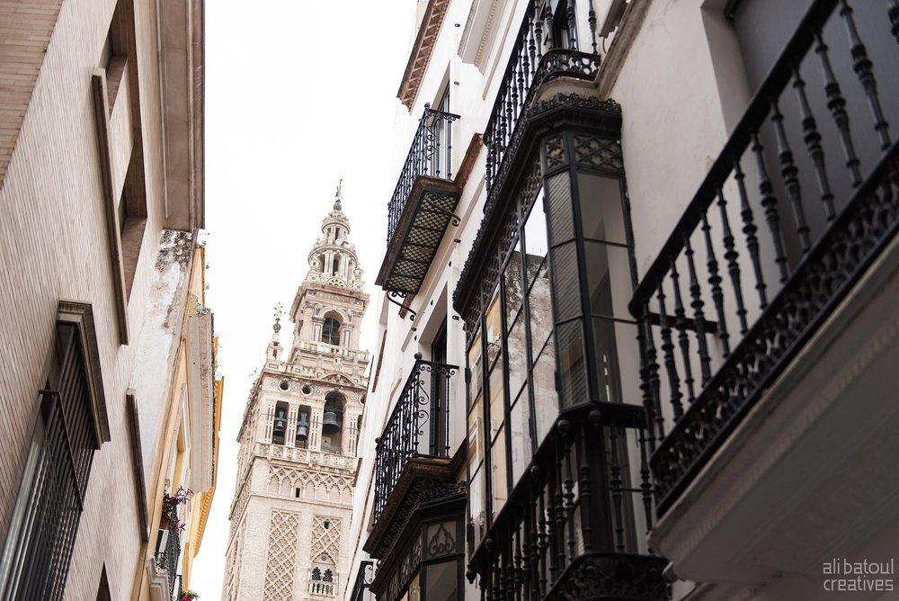 Seville - Ali Batoul Creatives-22_Stomped.jpg