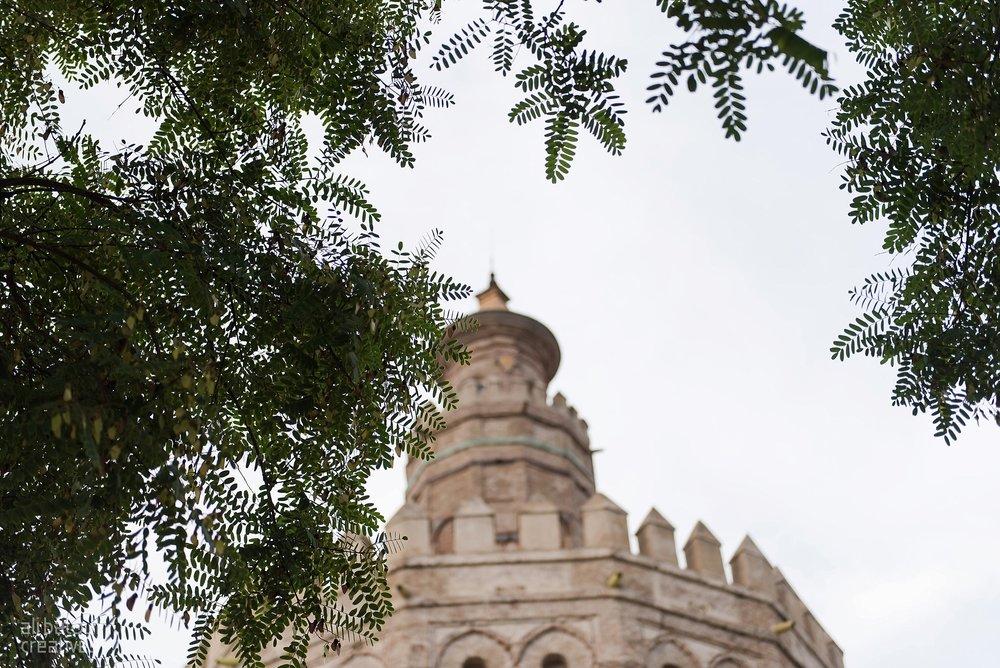 Seville - Ali Batoul Creatives-53_Stomped.jpg