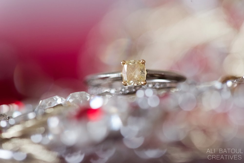 Uzma + Ian Wedding- Ali Batoul Creatives Fine Art Wedding Photography_0086.jpg