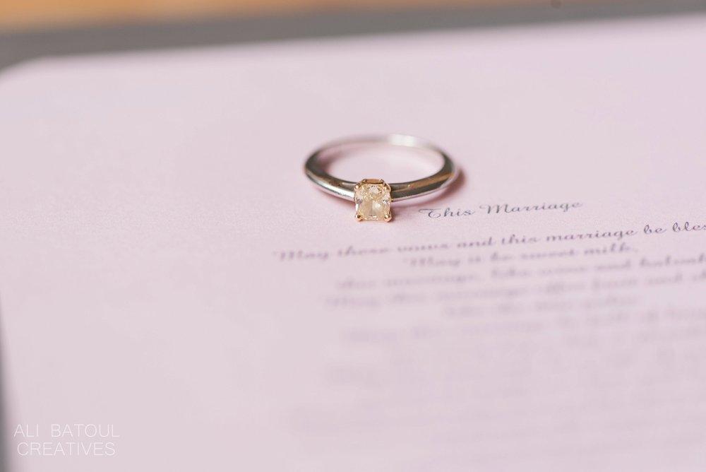 Uzma + Ian Wedding- Ali Batoul Creatives Fine Art Wedding Photography_0093.jpg