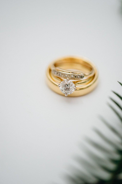 Ali and Batoul Photography - light, airy, indie documentary Ottawa wedding photographer_0321.jpg