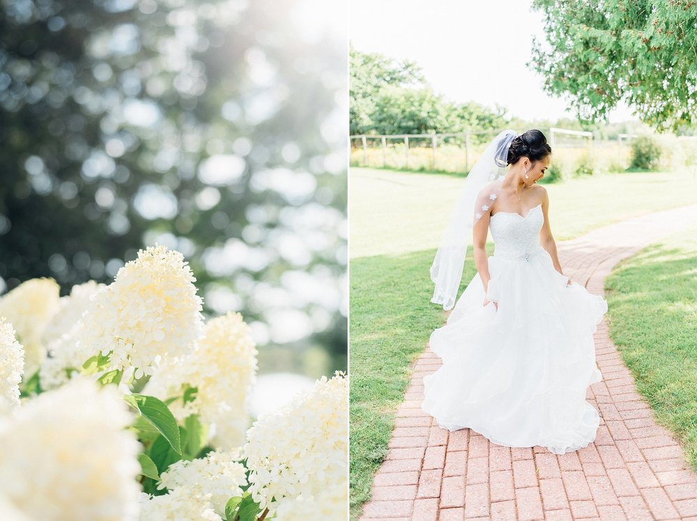 Ali and Batoul Photography - light, airy, indie documentary Ottawa wedding photographer_0091.jpg